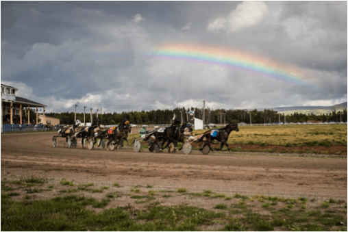 Harness Racing @ Inverness Raceway
