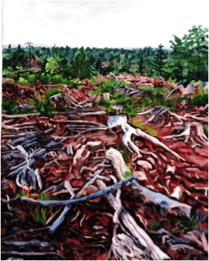 Return to the Forest – Gallery Exhibit @ Inverness County Centre for the Arts